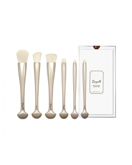 Sea Shell Beauty Brush Collection (Set of 6) with acrylic case